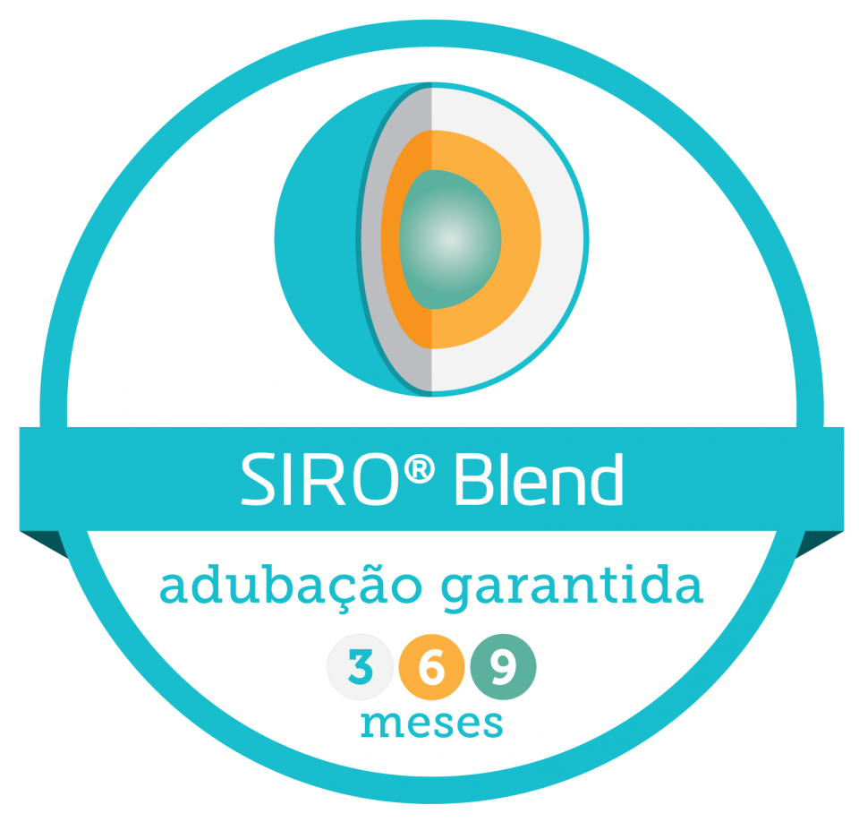blend_9meses.png